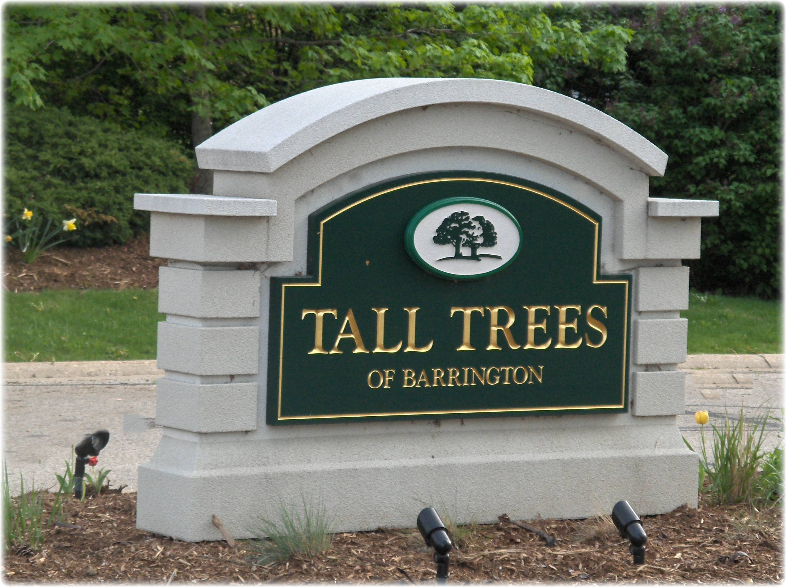 Tall Trees of Barrington